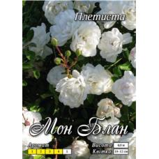 Мон Блан (вьющаяся) Премиум