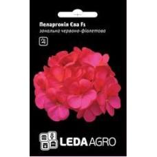 Пеларгония Ева F 1 красно-фиолет. 5 шт.